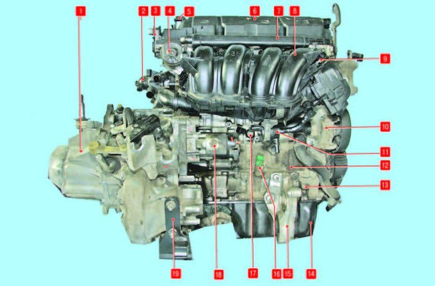Компоновка силового агрегата с двигателем объемом 1,6 л и механической коробкой передач (вид сзади)